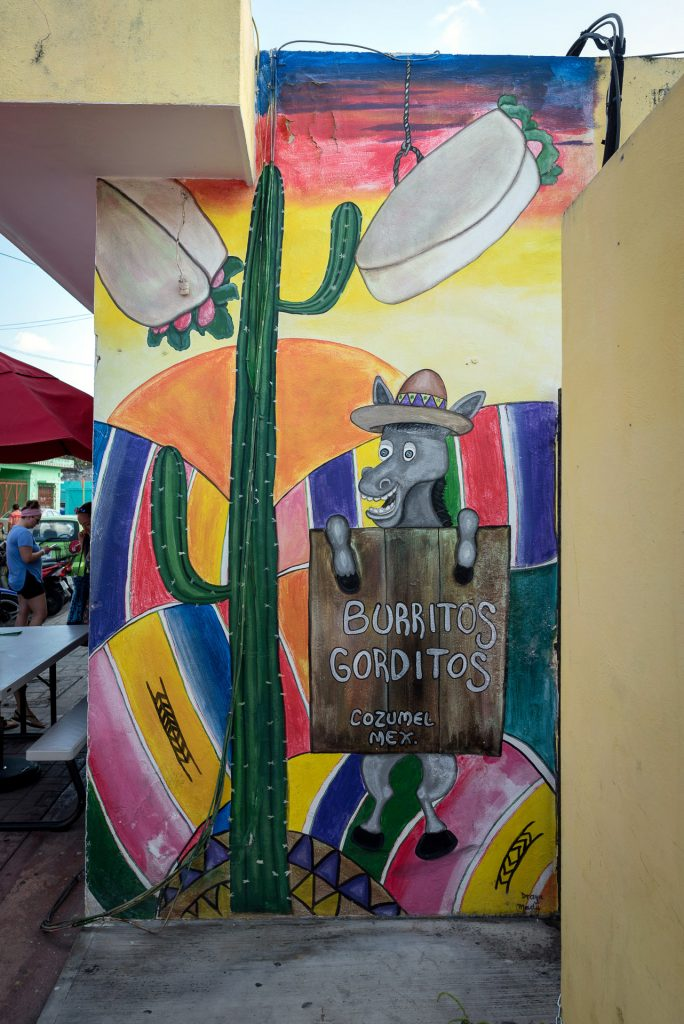 Cozumel March 16 2019 009 684x1024 - Picture Perfect Cozumel