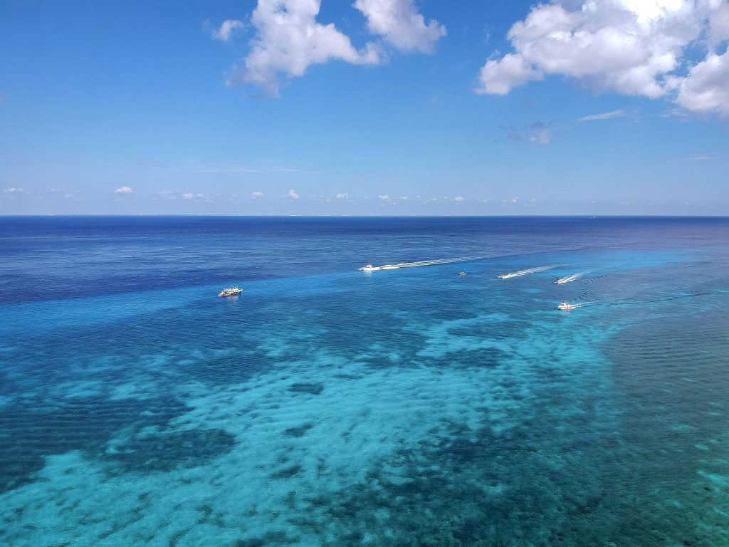 Cozumel March 16 2019 017 1024x768 - Picture Perfect Cozumel