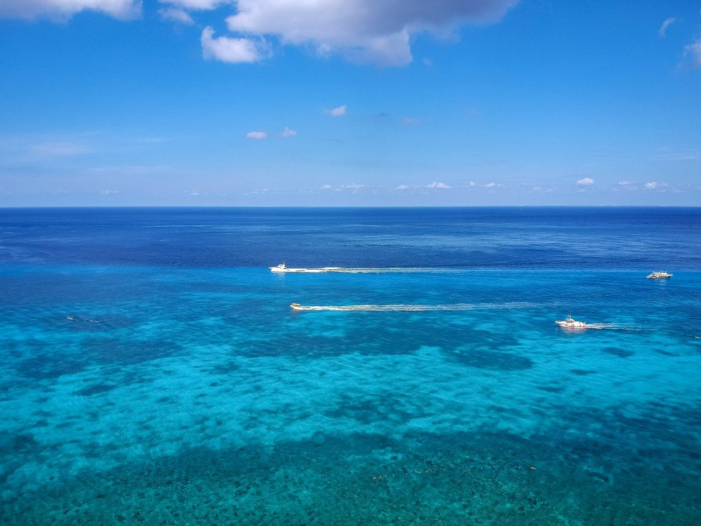 Cozumel March 16 2019 019 1024x768 - Picture Perfect Cozumel