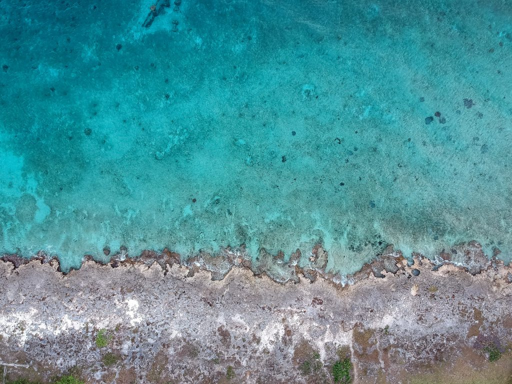 Cozumel March 16 2019 021 1024x768 - Picture Perfect Cozumel