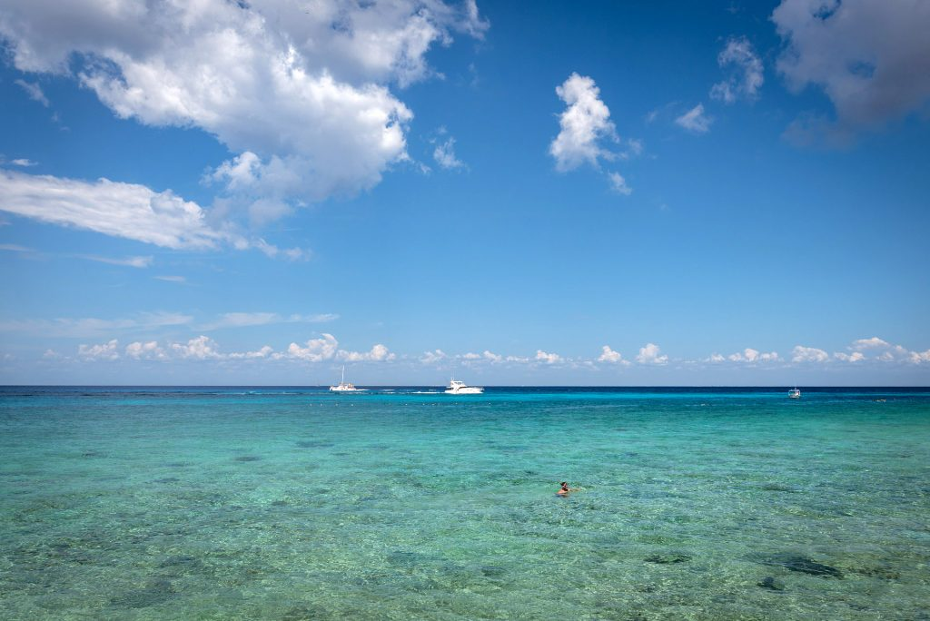 Cozumel March 16 2019 025 1024x684 - Picture Perfect Cozumel