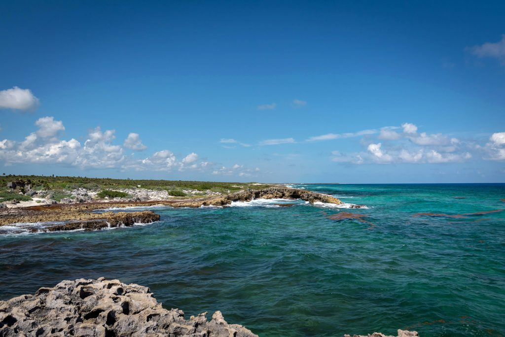 Cozumel March 16 2019 033 1024x684 - Picture Perfect Cozumel