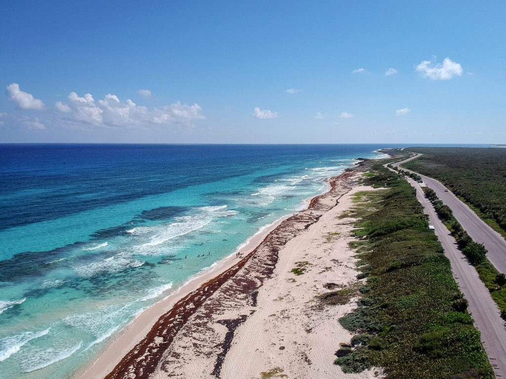 Cozumel March 16 2019 039 1024x768 - Picture Perfect Cozumel