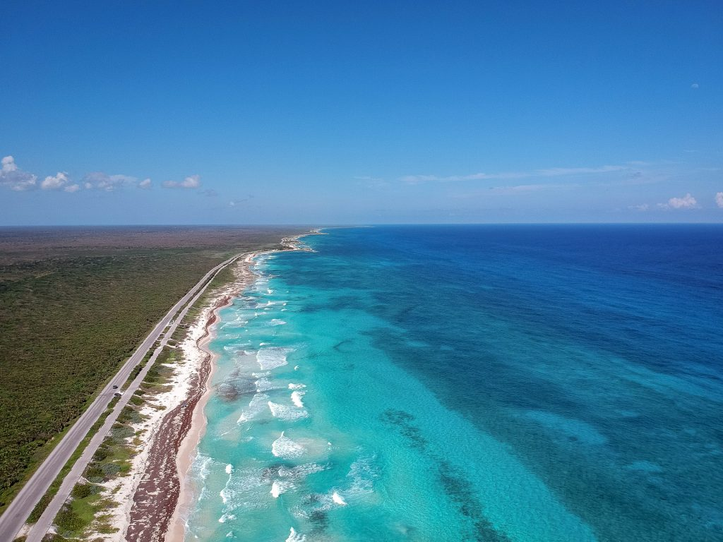 Cozumel March 16 2019 040 1024x768 - Picture Perfect Cozumel