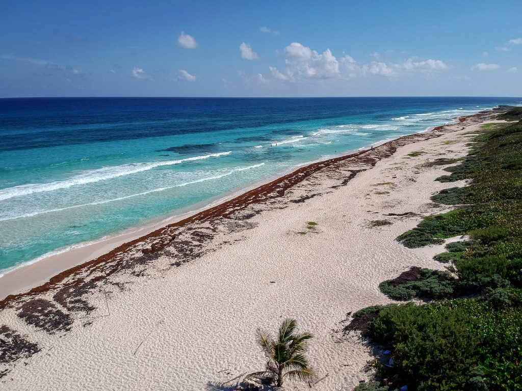 Cozumel March 16 2019 045 1024x768 - Picture Perfect Cozumel