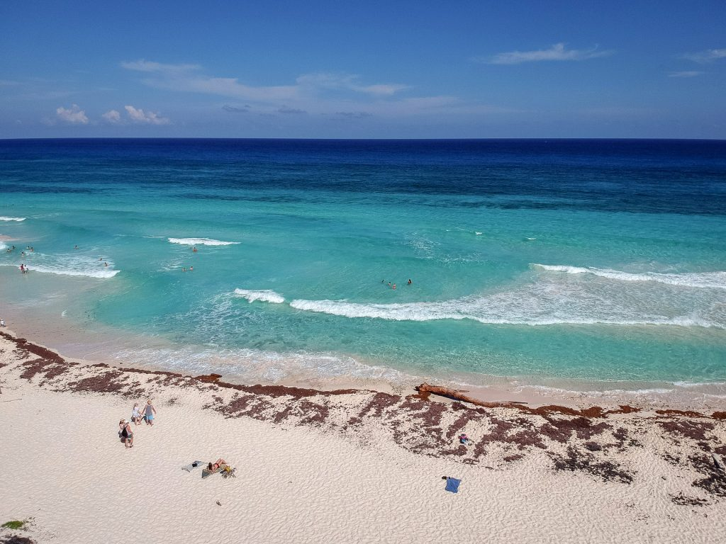 Cozumel March 16 2019 047 1024x768 - Picture Perfect Cozumel